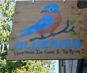 Photo of Bluebird - Seattle, WA