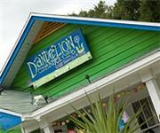 Dandelion Communitea Cafe Organic Vegetarian Teahouse - Orlando, FL (407) 362-1864