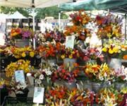 Boulder Farmers Market - Boulder, CO (303) 910-2236