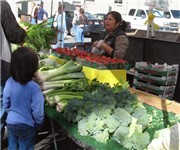 Photo of Bayshore Farmers Market - San Francisco, CA - San Francisco, CA