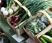 Photo of Haines State Park Farmers Market - Barrington, RI